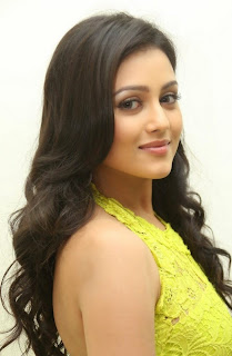 Actress Mishti Chakraborty Picture Gallery in Long Dress at Chinnadana Nee Kosam Audio Launch  34