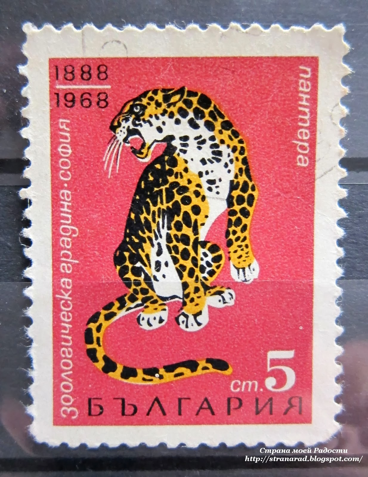 дикие кошки на почтовых марках
