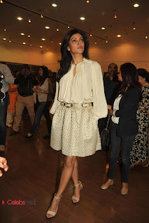 Sushmita Sen Latest Pictures in Short Dress at Art Exhibition of Women and We Men  0013