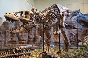 Museum Geologi Bandung - Kupuk Blog