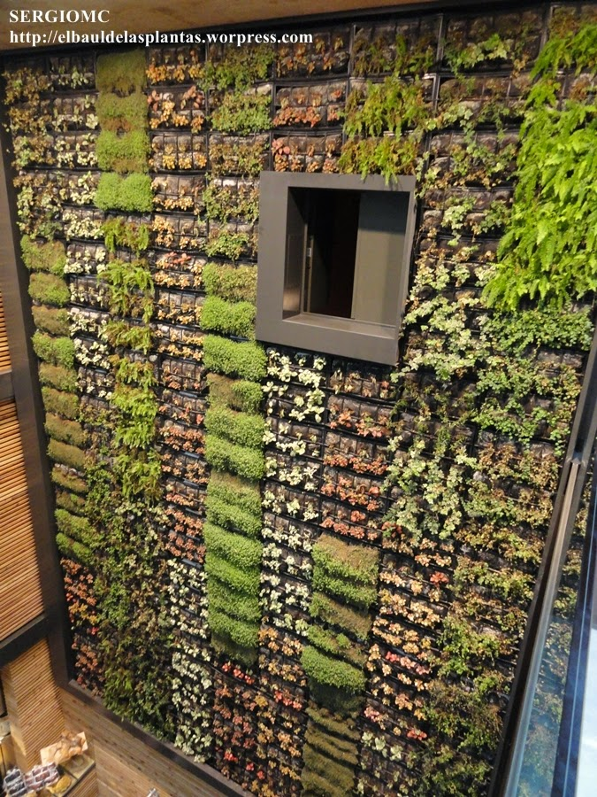 jardin vertical interior
