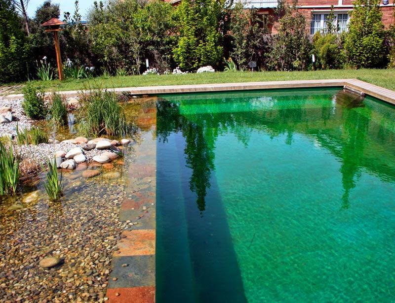 Piscinas biol gicas naturais jardim design for Piscinas biologicas