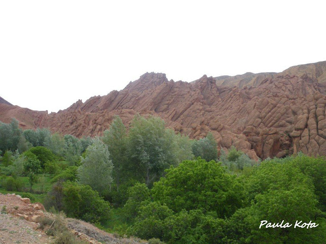Na Terra do Sol Poente - Viagem a solo por Marrocos - Página 2 IMGP0365