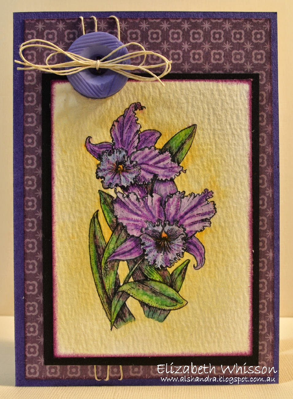 Elizabeth Whisson, Flourishes, Orchids, watercolour pencils, watercolor pencils, Rexel Derwent, handmade card