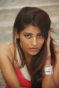 actress Gayatri glamorous photos-thumbnail-17