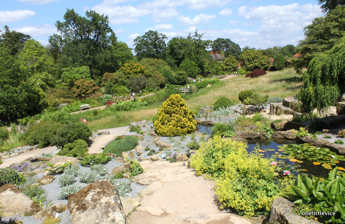 one little vice lifestyle blog: summer day trip to Wisley
