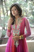 Vithika Sheru Photos at Prema Ishq Kadhal Success Meet-thumbnail-14