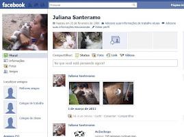 Gatinho no Facebook