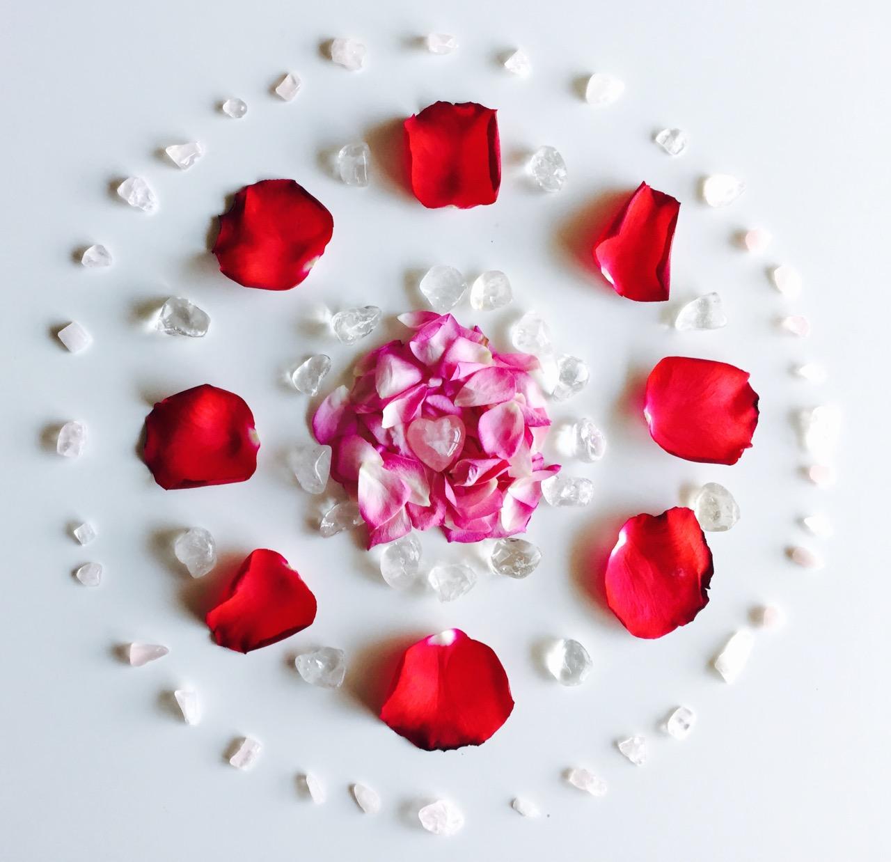 ☆赤いバラのフラワーグリッド