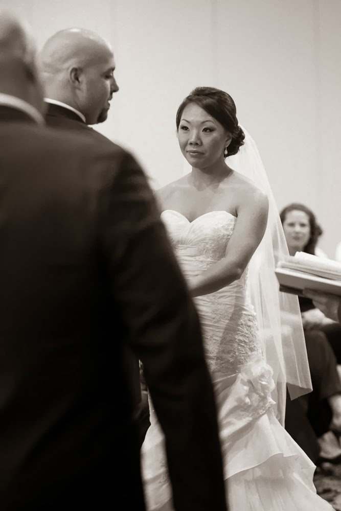 Boro Photography: Creative Visions, Sneak Peek - Married! Nashua Crowne Plaza, New Hampshire Wedding