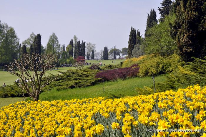 Risultati immagini per valle verdeggiante fiori