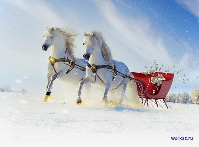 MMCIS новогодние подарки золотая подкова удачи и акции