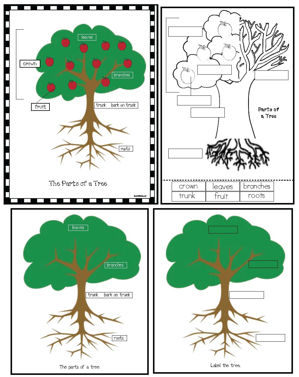 Label the parts of a tree by ruthbentham - Teaching Resources - Tes