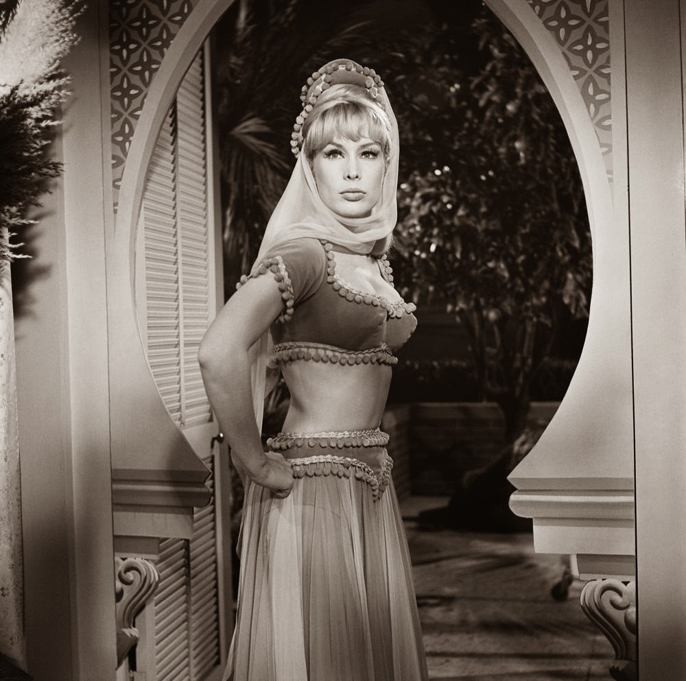 Apologise, but, Barbara eden as jeannie the valuable