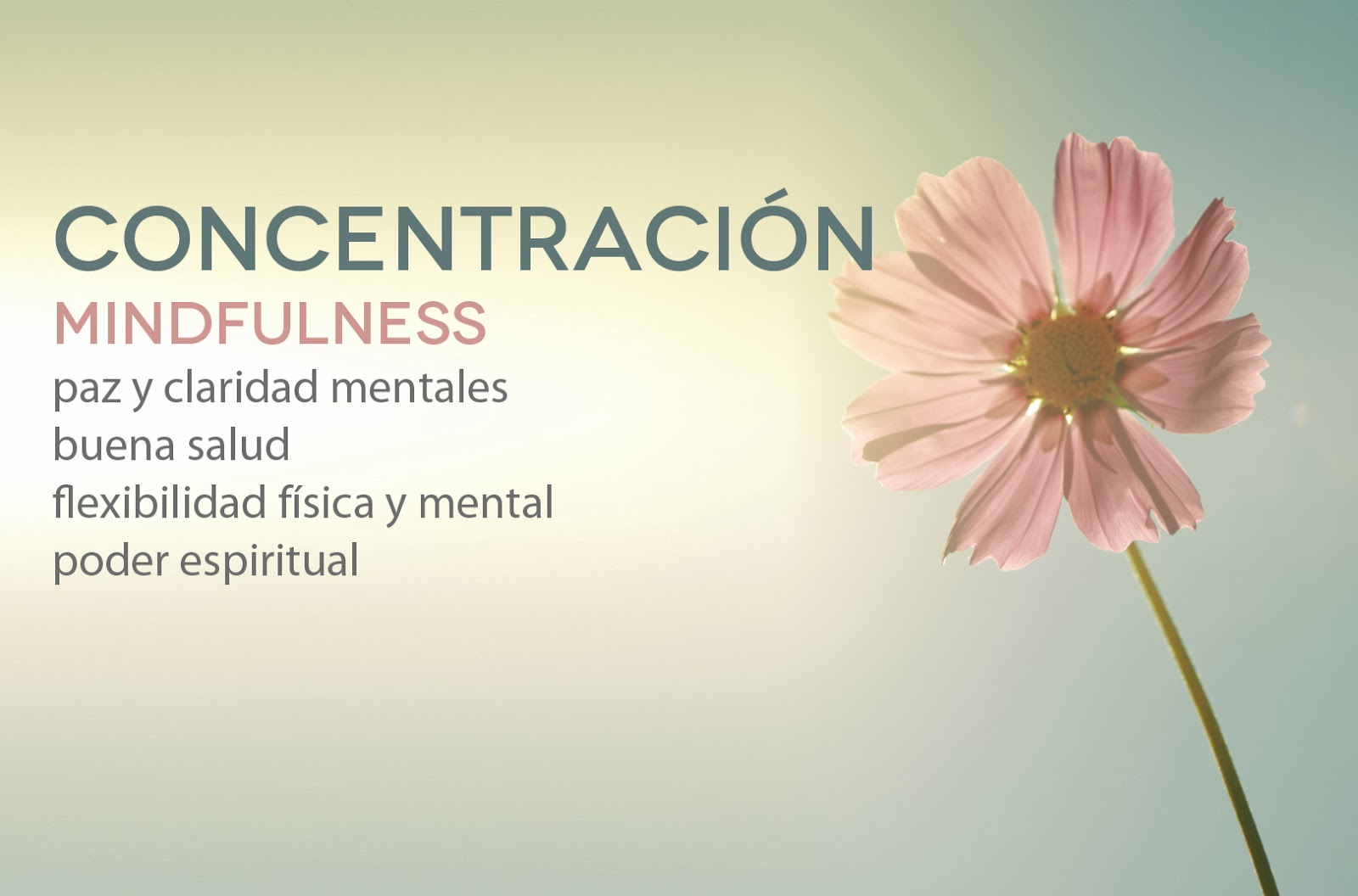 Meditar en barcelona beneficios de la concentraci n for Meditacion paz interior