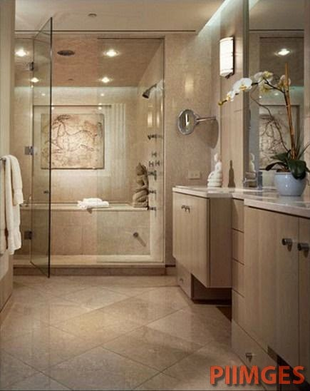 Bath Shower combo. Stand up shower with a soaking tub behind it ...