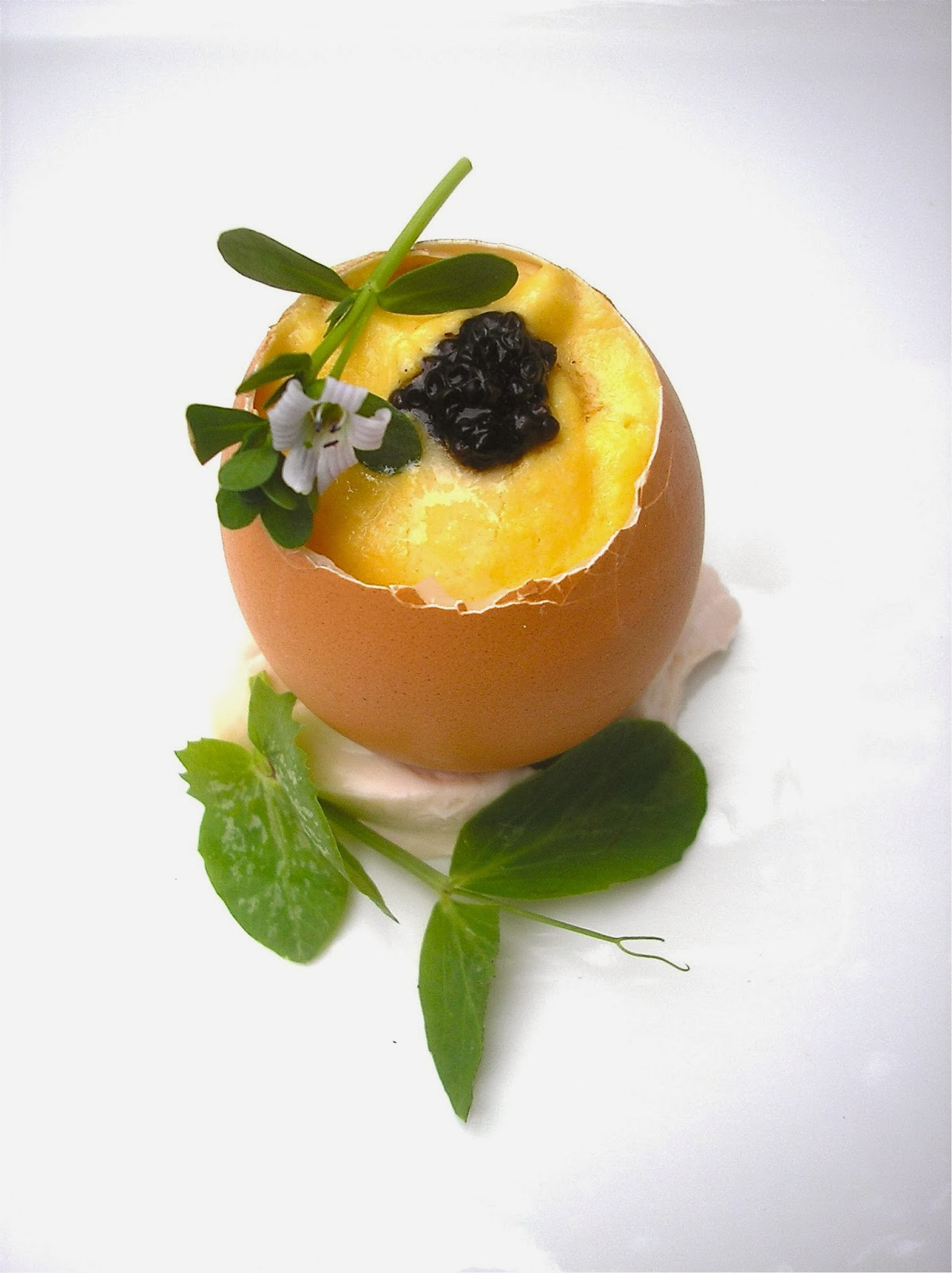 Custard of Hens egg yolks & White summer Truffle , White Truffle ...