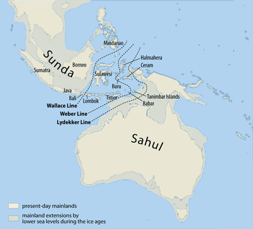 map of papua new guinea and australia. and Papua New Guinea.