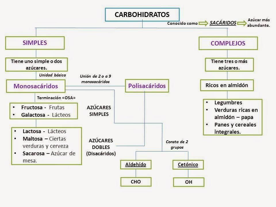 Tu salud y la nutrici n acci n de los carbohidratos en el cuerpo - Que alimentos contienen carbohidratos ...