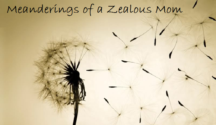 Meanderings of a Zealous Mom