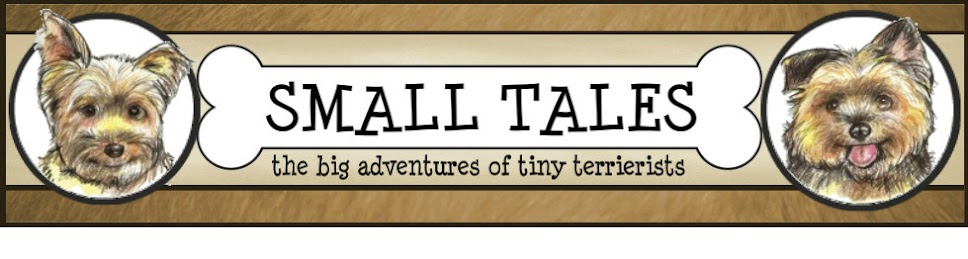 Small Tales