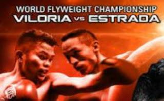 Brian Viloria vs. Juan Francisco Estrada