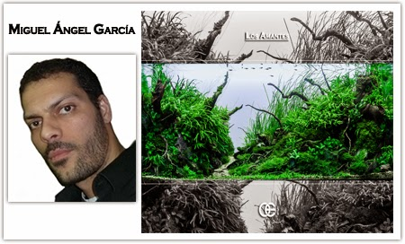 http://colectivo-cae.blogspot.com.es/2014/12/miguel-angel-garcia.html