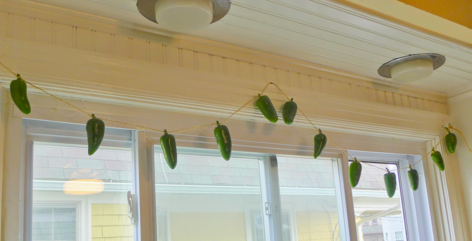 Air Drying Jalapeno Peppers,preserving