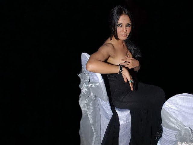 hot celebrities pics-bollywood hot actresses  Celina Jaitley looking sex bomb in sexy pics and photos