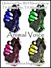 ANIMAL VOICE - FACEBOOK PAGE