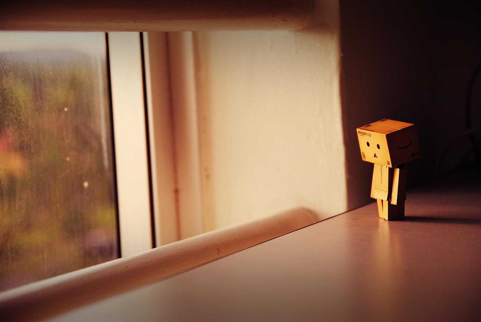 All About Danbo