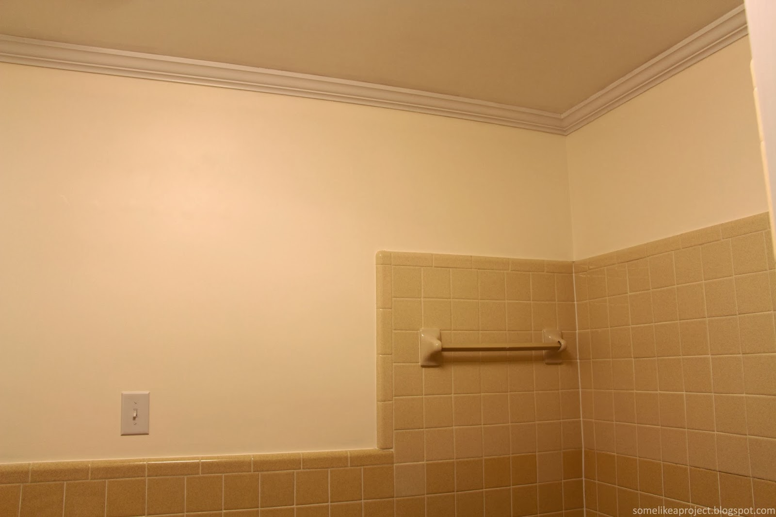 Some Like A Project: Guest Bathroom Wall Color and Revised Mood Board