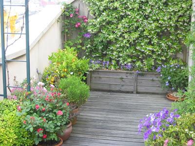 Arte y jardiner a el jard n en macetas - Como disenar un jardin grande ...
