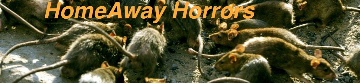 HomeAway/Expedia Horrors