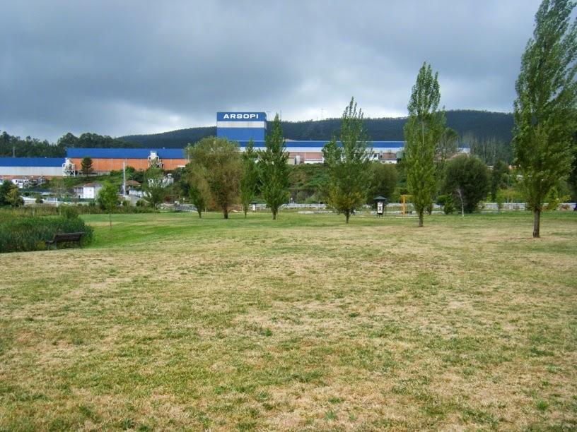 Arsopi ao lado do Parque Urbano de Vale de Cambra