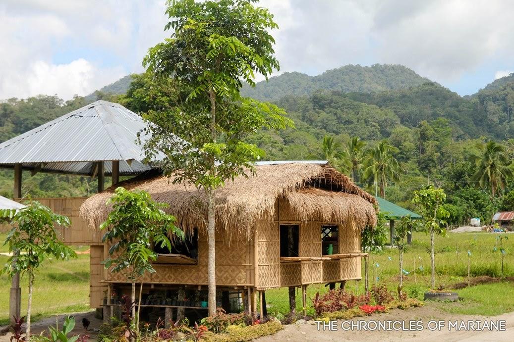 tboli house