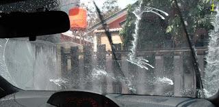Jamur Pada Kaca Mobil