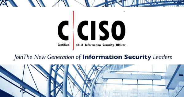 Chief Information Security Officer Resume Examples