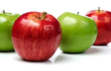 saksıda meyve
