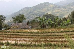 Landscape in Simacai