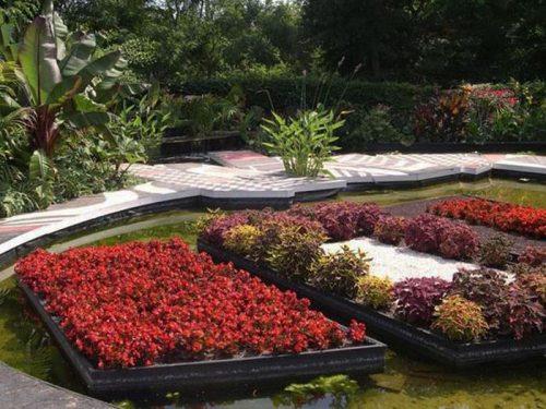 فن عمارة الحدائق المنزلية 2014  Beautiful-gardens-manly-7