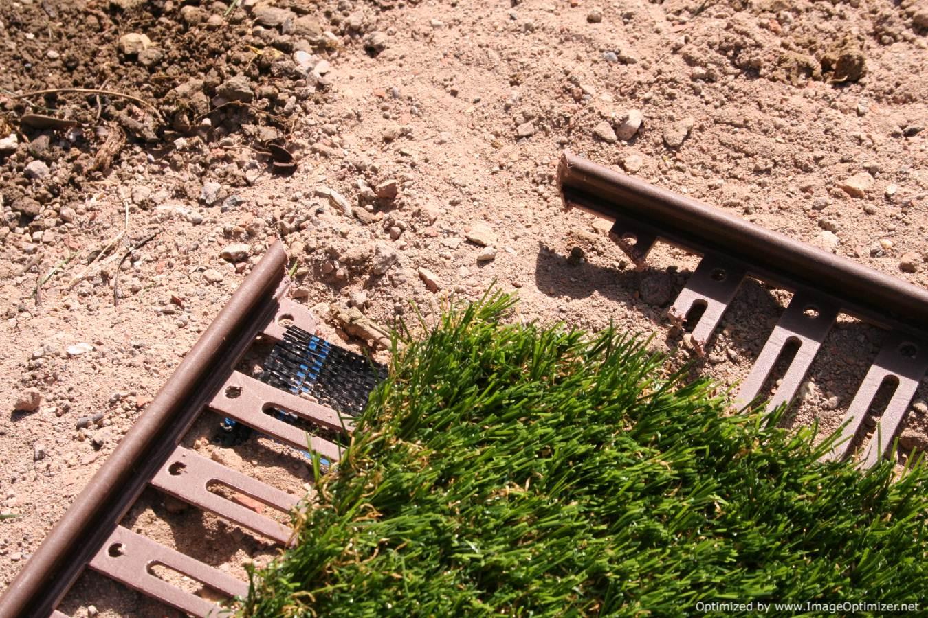 Unreal Gardens August 2011