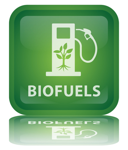 are bio fuels good