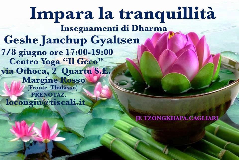 7 / 8  GIUGNO 2014    -    IMPARA LA TRANQUILLITA'