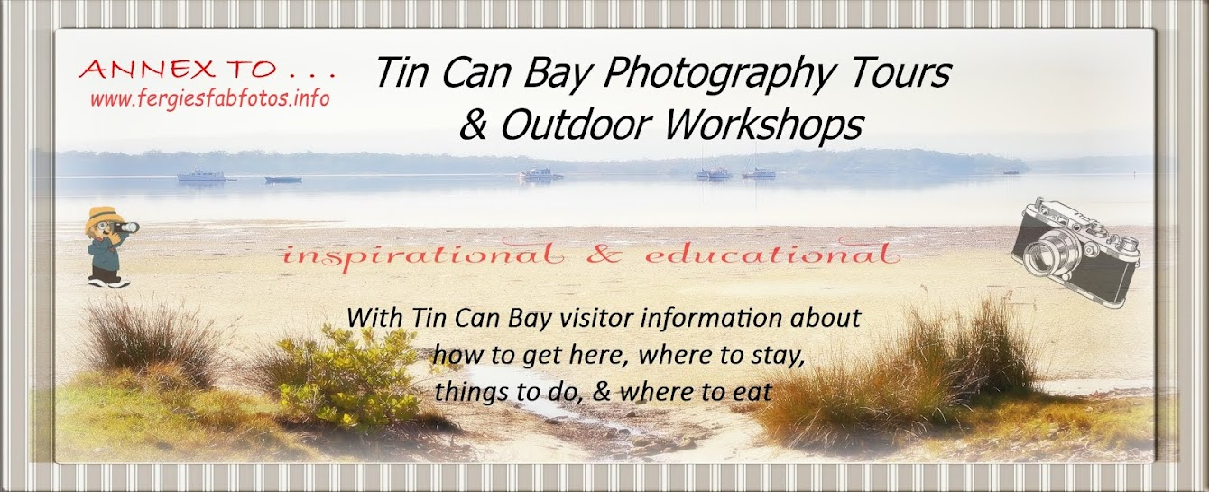 Tin Can Bay Photography - Tours & Outdoor Workshops