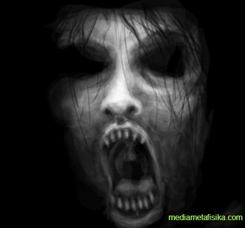 Misteri Mengerikan Situs Web 'The Blind Maiden' - mediametafisika.com