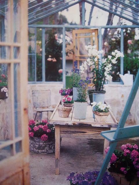 flores invernadero