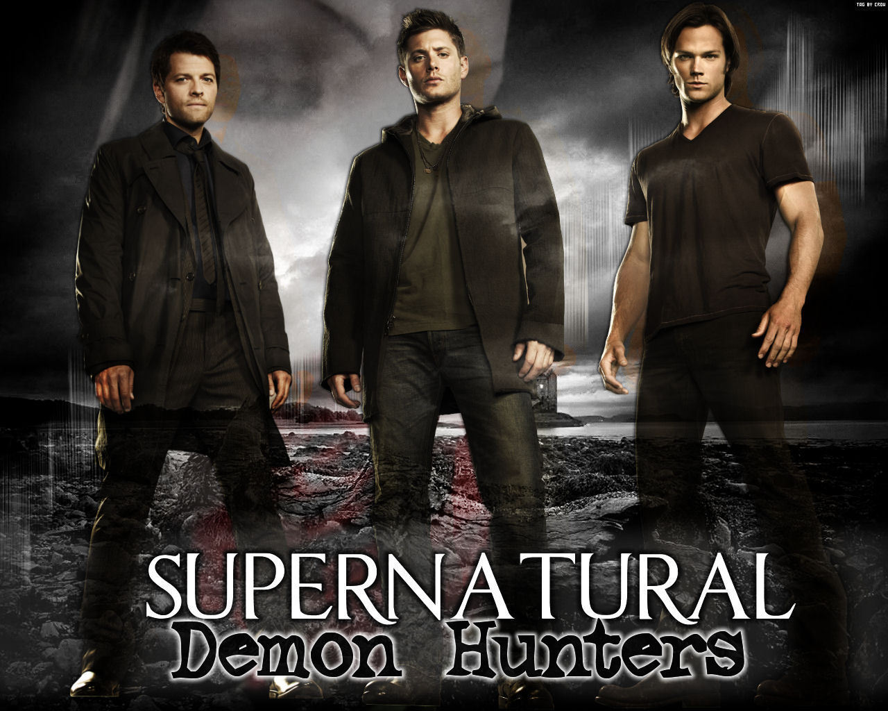 http://4.bp.blogspot.com/-OXdV0Rv0zoU/UM5GGebIKfI/AAAAAAACJ04/0aJHUy2mMXE/s1600/supernatural_poster75.jpg