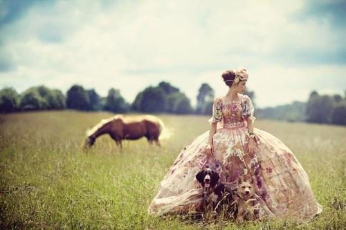 fashion photography horse sail and swan blog