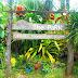Tourist destination of Real Quezon - The…